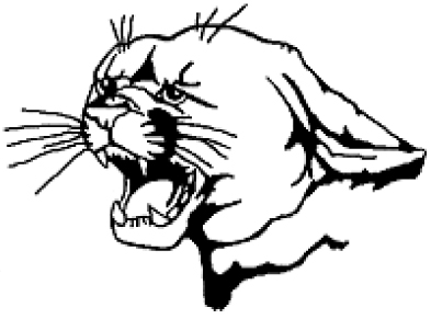 PHS panther head logo
